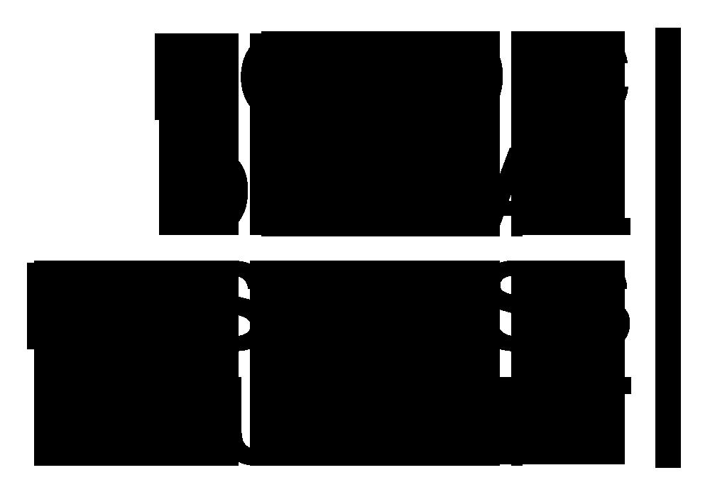NDBS 2015 logo tran#1331A5E.png