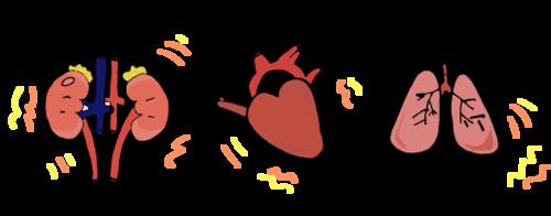 organos inflamados.png