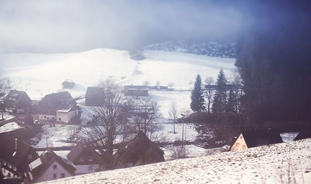 Black Forest | Germany | Photo 6 #blackforest #forest #villagelife