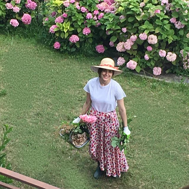🌸🌸🌸🌸 #gardening