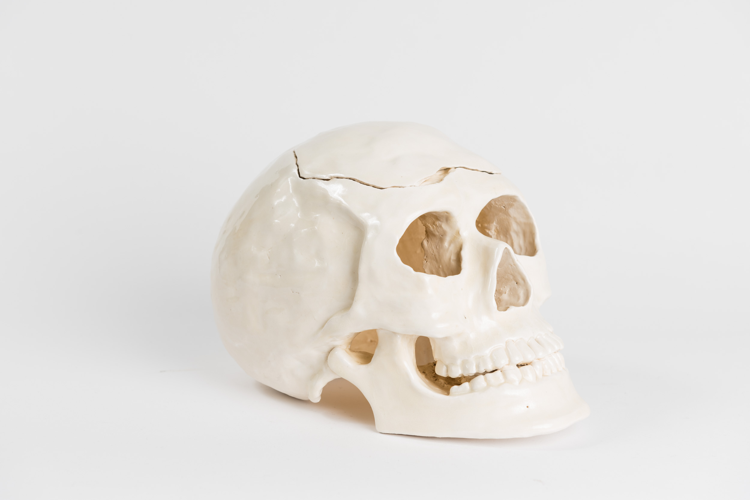 Ceramics     Hand-built ceramic skull