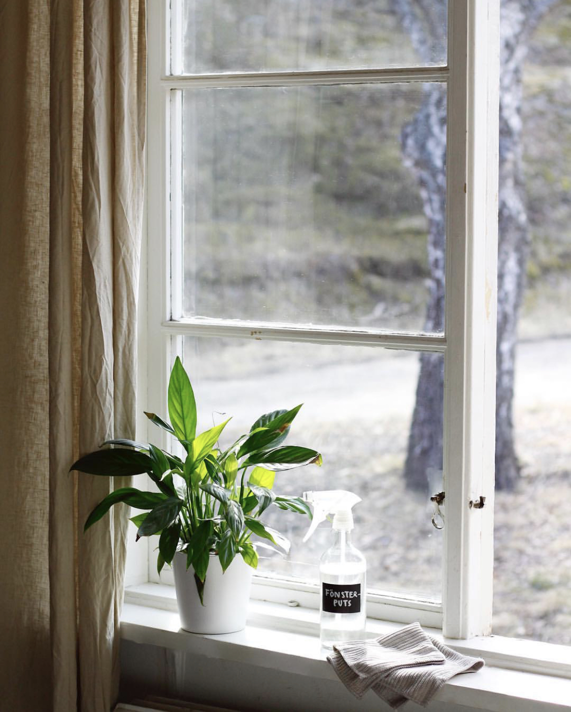 miljövänlig fönsterputs