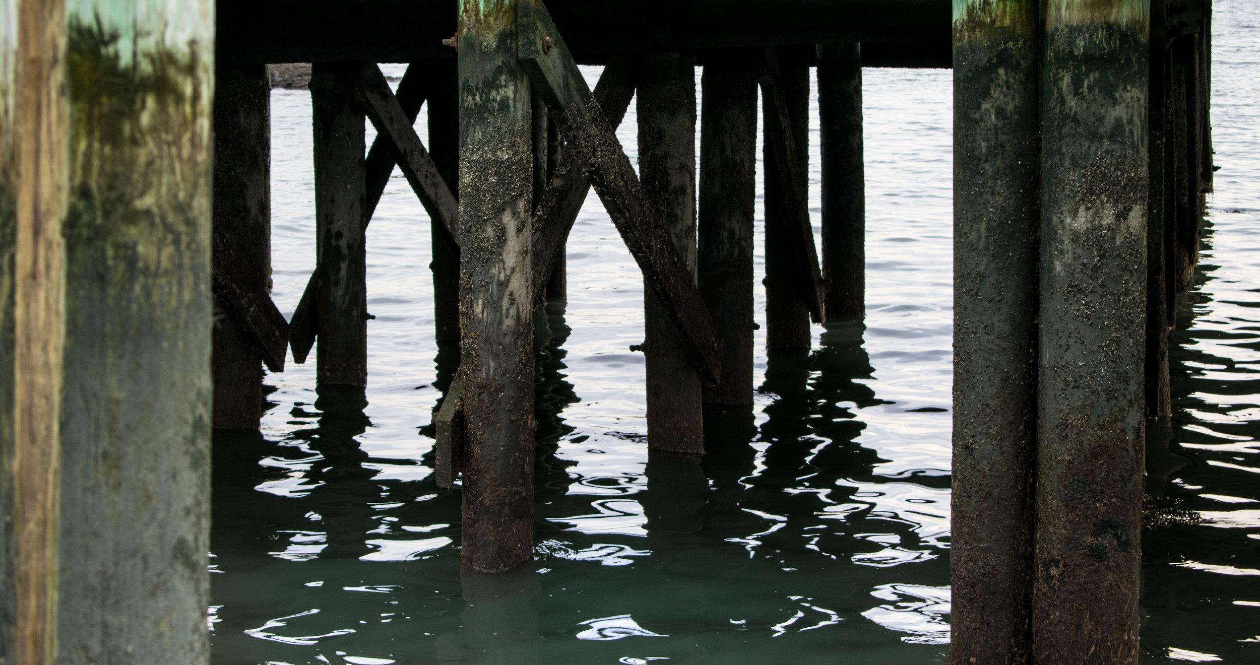 Docks in Branford