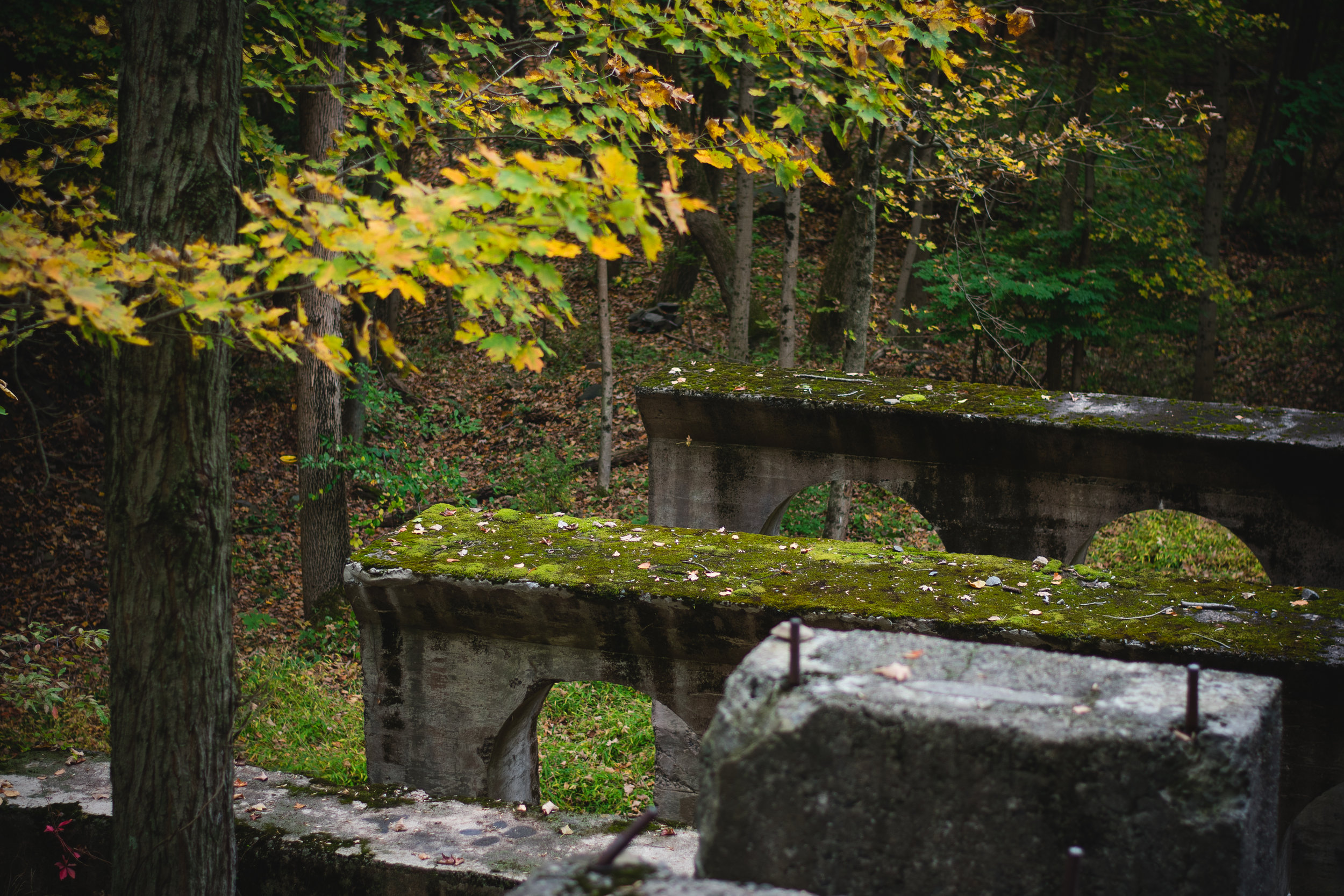 sleeping giant arches from with moss2.jpg