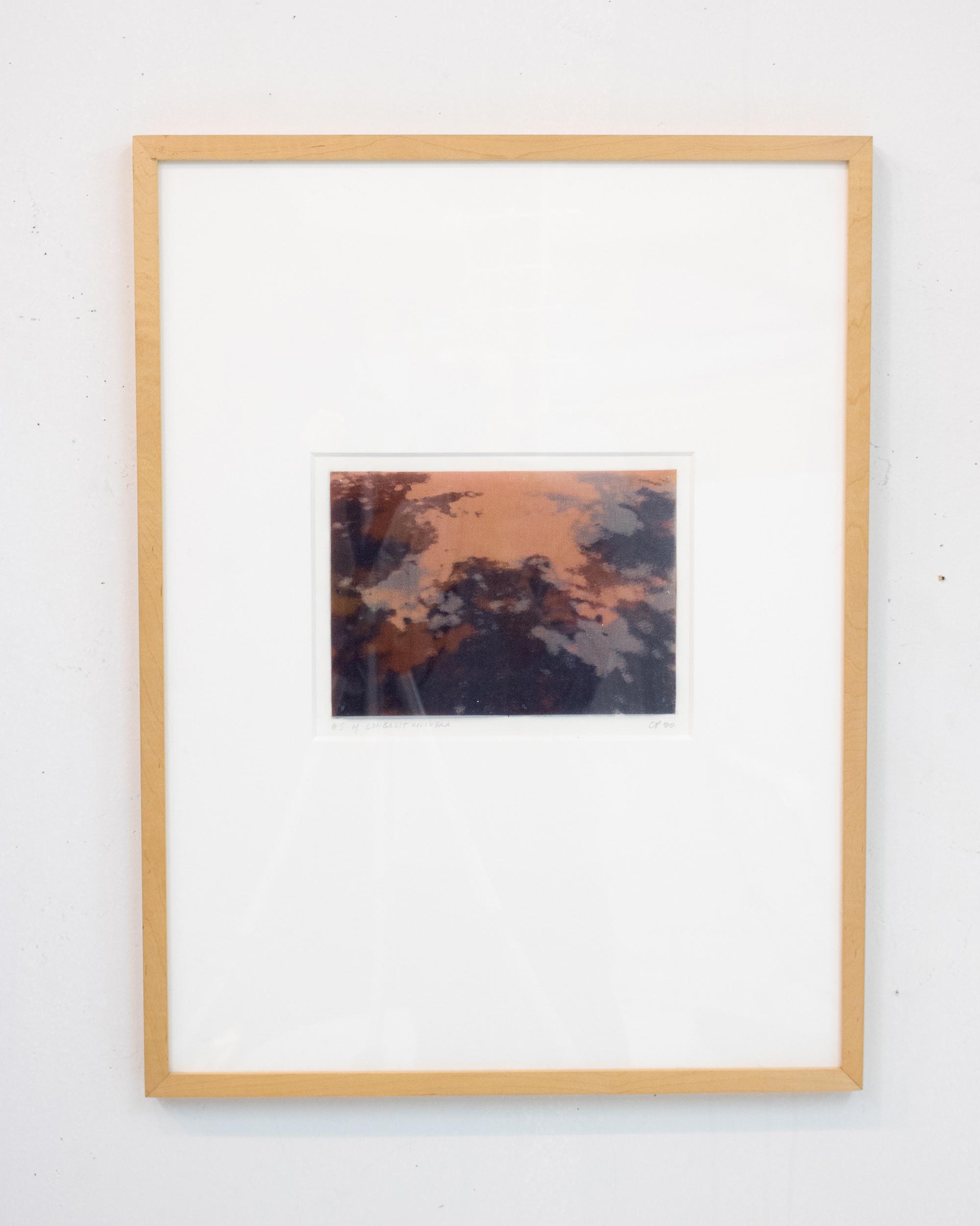 Carol Peligian,  Congruit Universa II , 1999, silk, graphite, plastic, ink, 24 3/4 x 18 3/4 inches