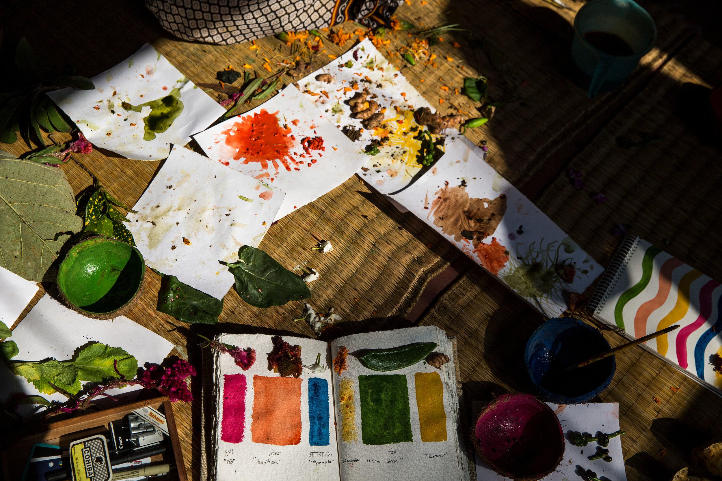 Pingla_Colors_018.JPG
