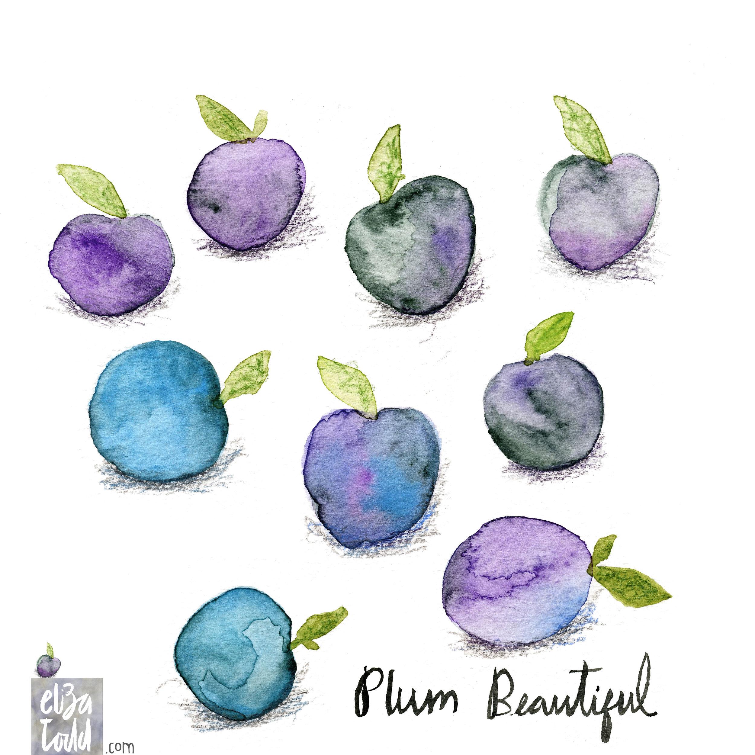 plum-beautiful.jpg