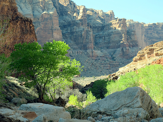 Above: the bottom of Dark Canyon.