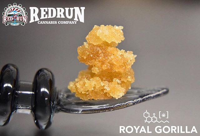 If you thought @redrunkenai was just making Hashade, think again!  Royal Gorilla | Crumble | 81.48 THC | 0.01 CBD 💎 License #11121