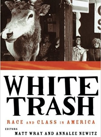 white trash - Look--it's my first book! In 1997, I co-edited this anthology of academic essays and memoirs with Matt Wray. It's about the intersection of race and class among poor whites in the United States. It got a lot of mainstream media attention for a scholarly work, eventually culminating in a New York Times Magazine story about our research.