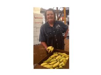 Ben and Christine Vanderbyl   Ben and Christine Vanderbyl of Mullumbimby provide Food Connect Brisbane with ecological ladyfinger bananas.