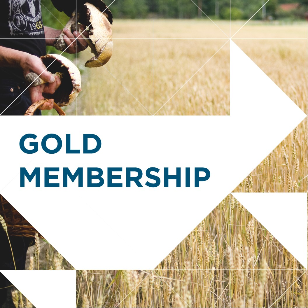 Gold_Membership_Icon.jpg