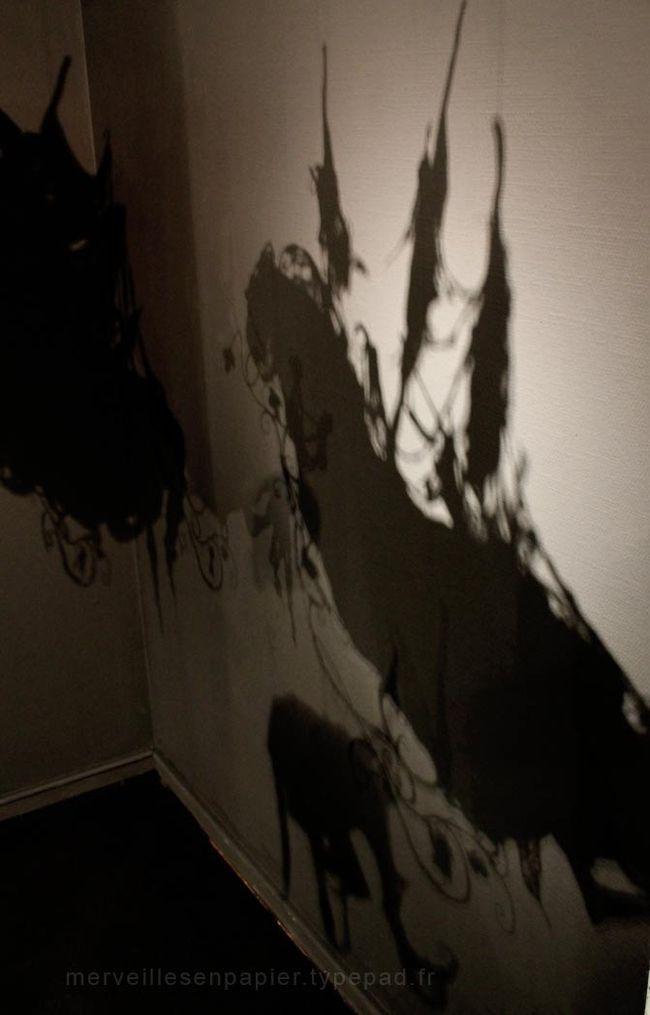 un royaume de dentelle ombres (2).jpg