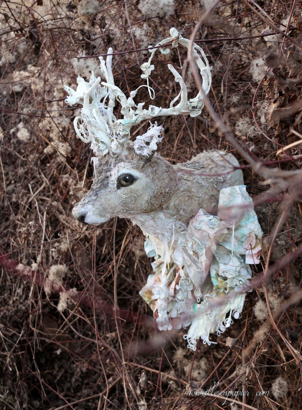deer trophy 1.jpg