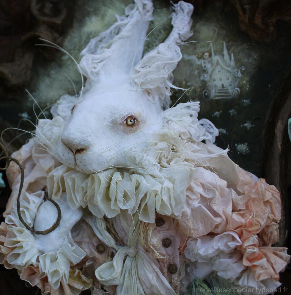 lapin-blanc--2.jpg