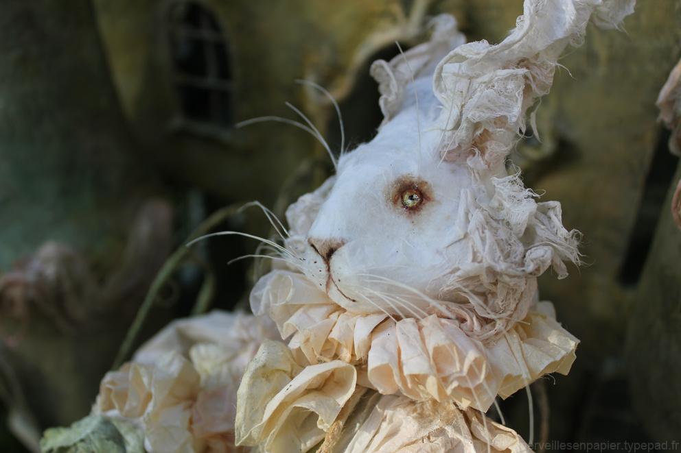 lapin-blanc-alice-5.jpg