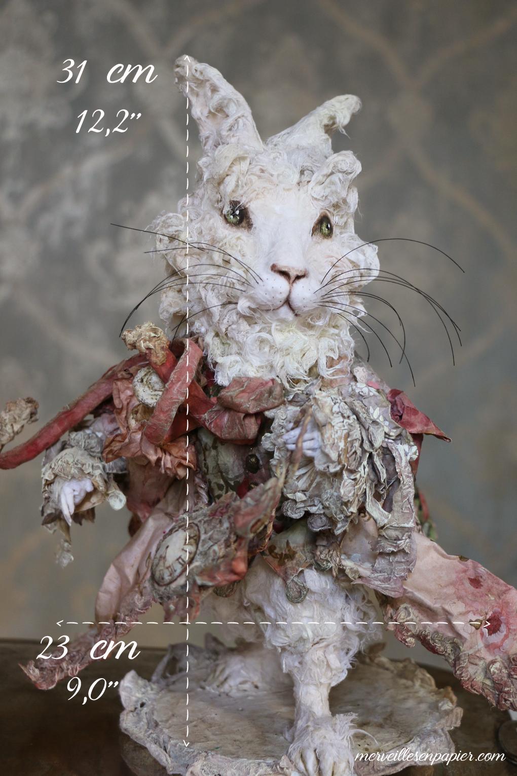 rabbit-measurements.jpg