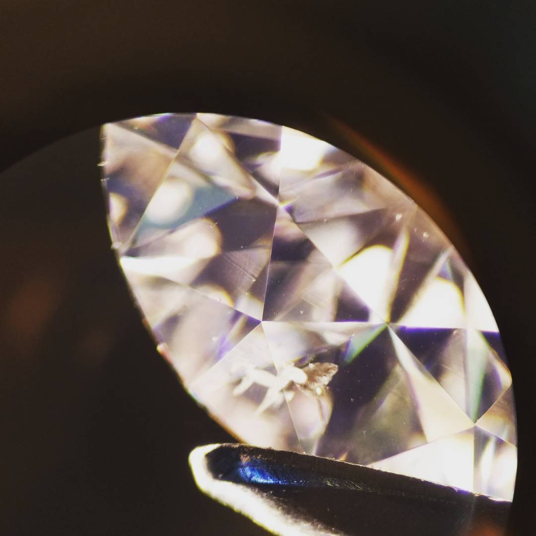 A natural diamond with an inclusion shaped like a horse!
