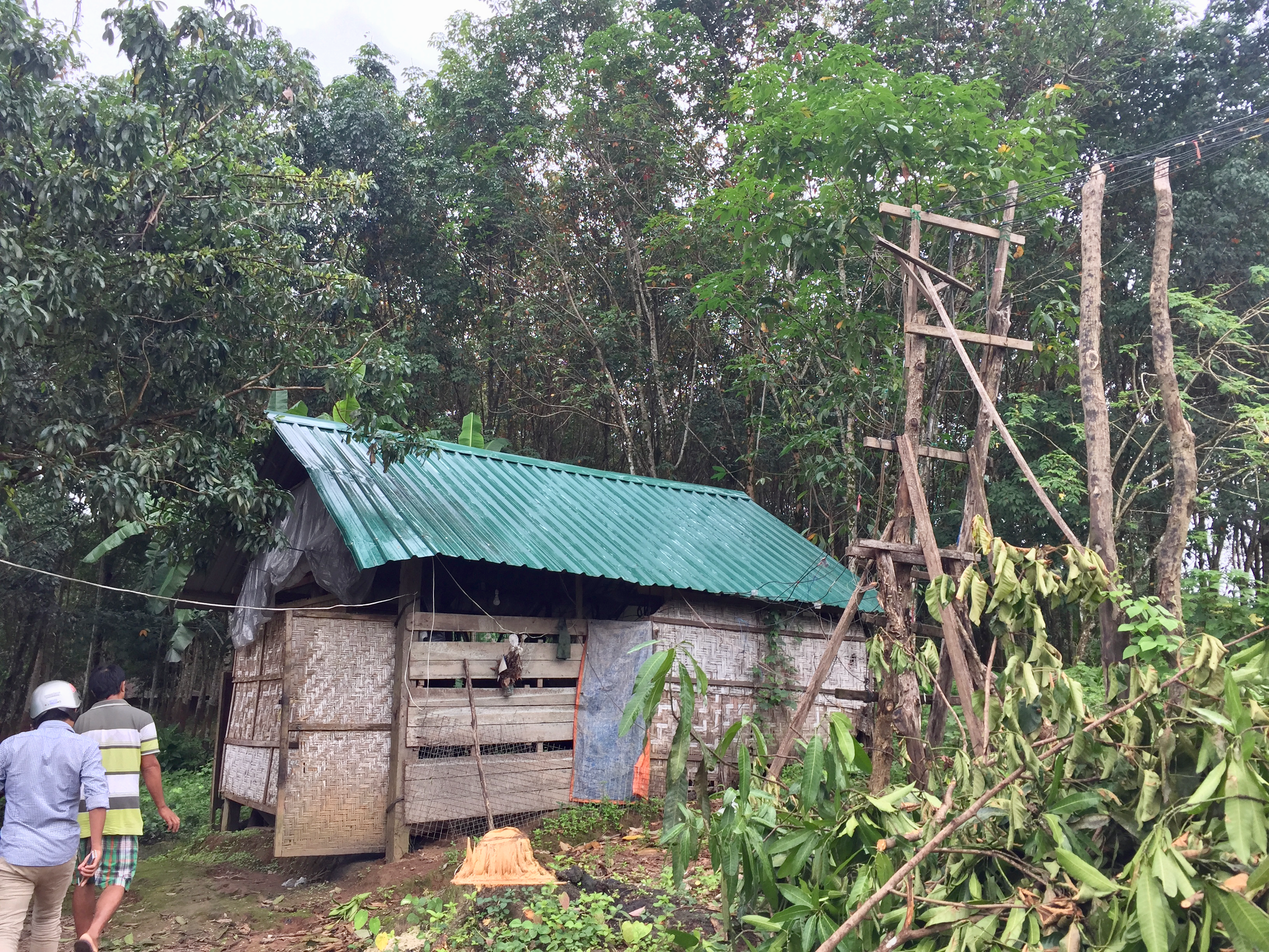 The building that houses Aung Moe Win's generator and the initial set of distribution poles that go to the households in the village.