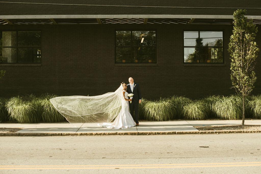 veil in the wind.jpg