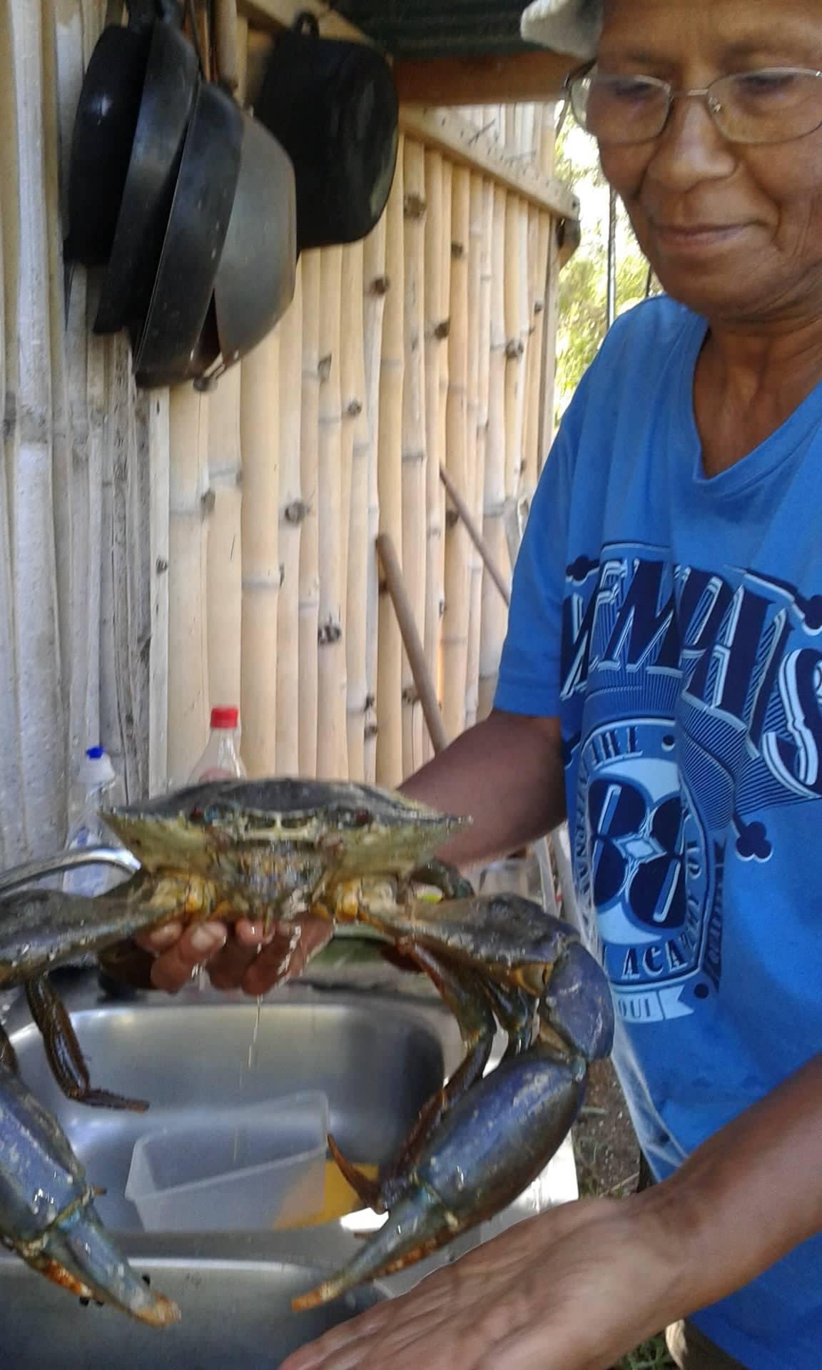 crabe de palétuviers