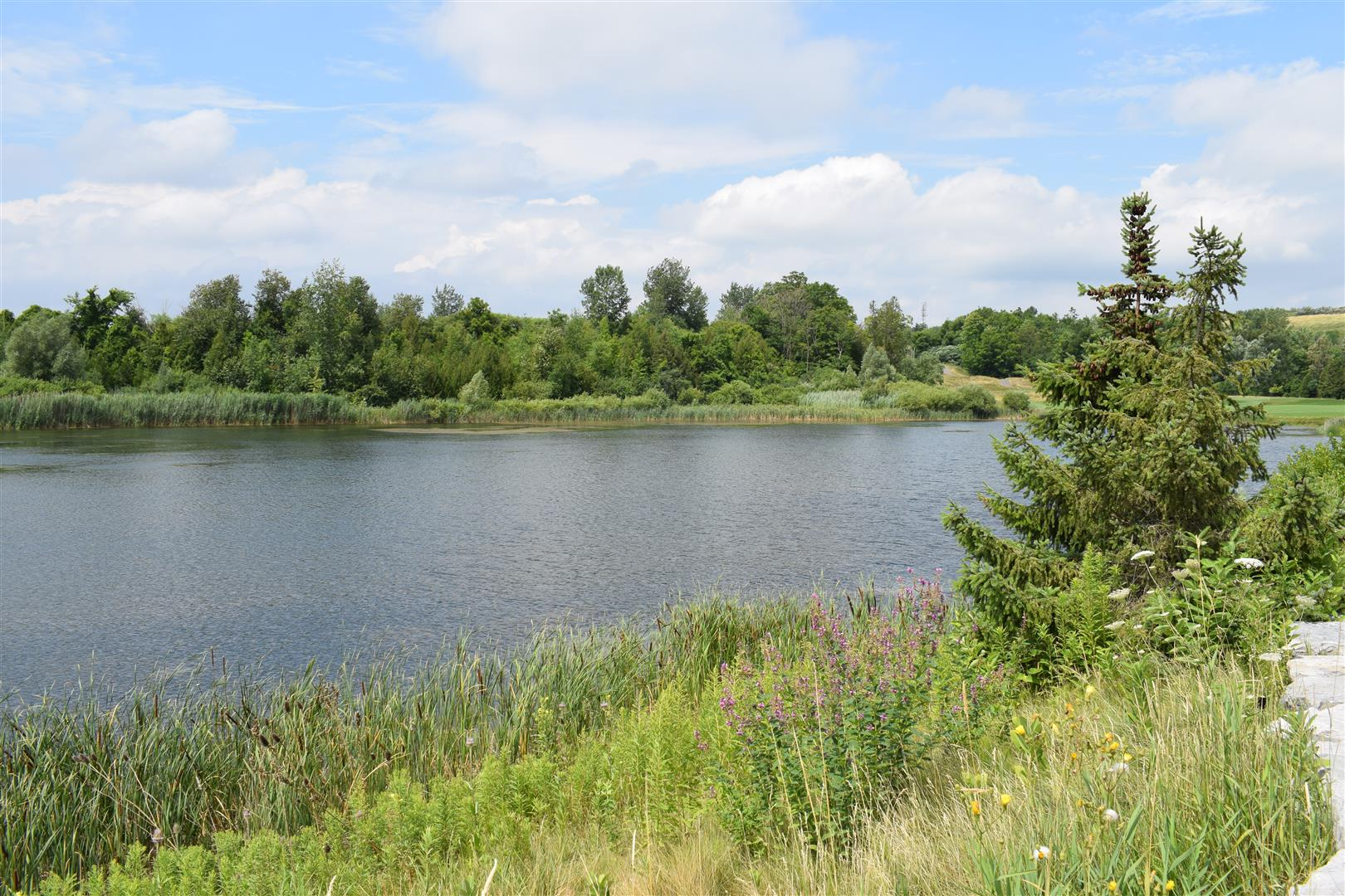 Eagle's Nest Golf Club - Vaughan, ON - July23/18