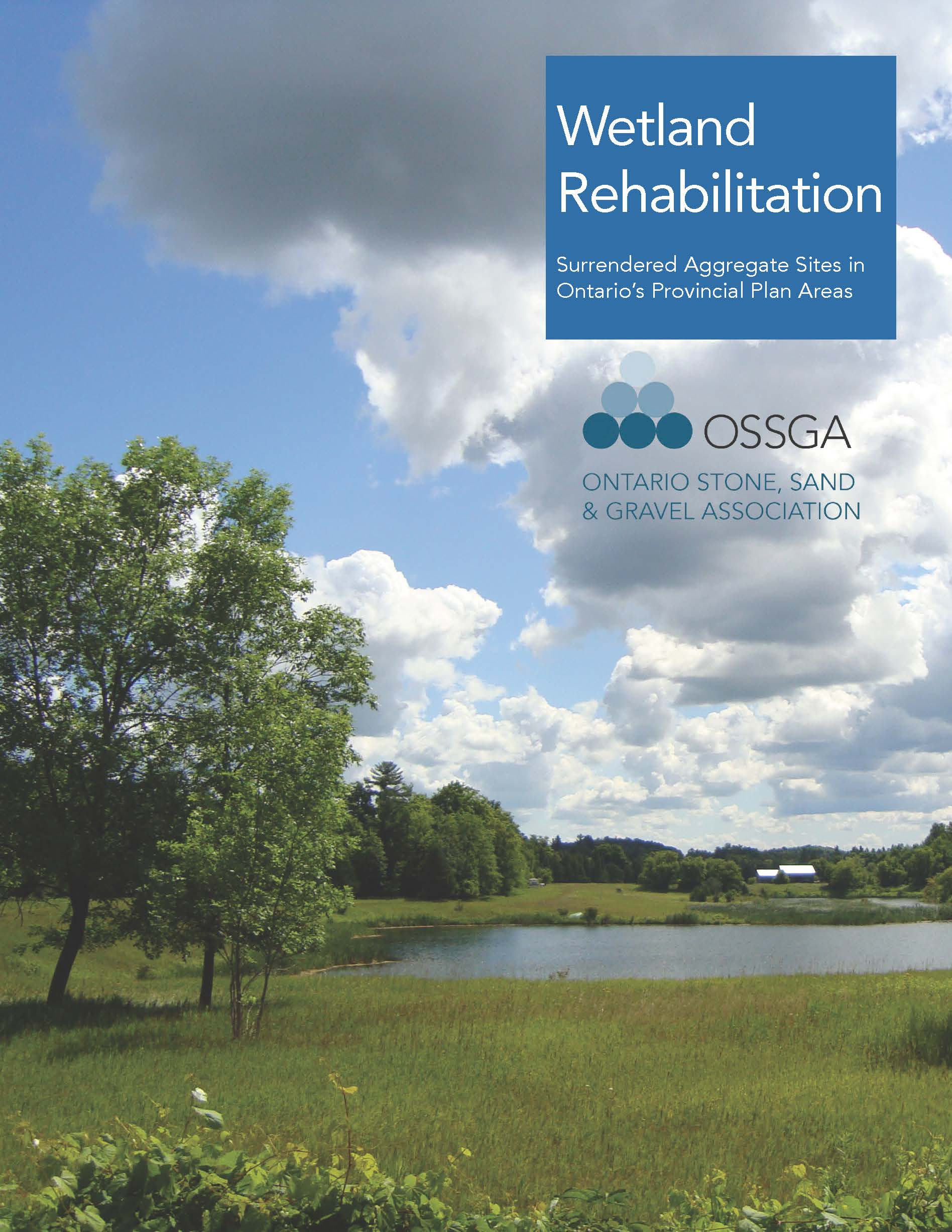 Read Study Phase I - OSSGA Rehabilitation Study Phase I 2017