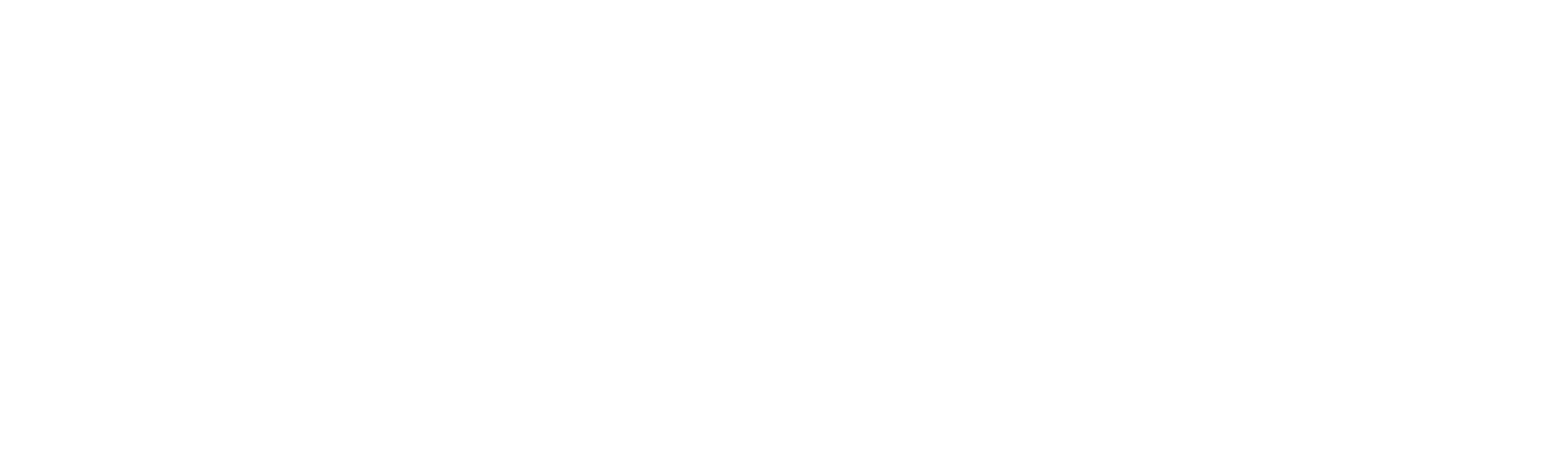 Rue_21_logo_Rue21.white.png