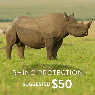 _0005_general rhino.jpg