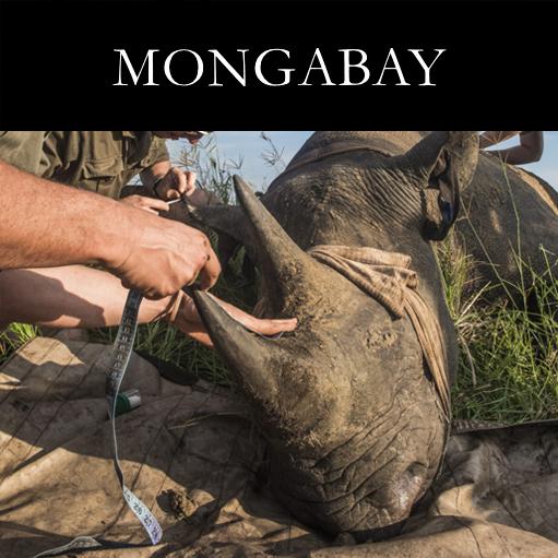 _0003_Mongabay Axel.jpg
