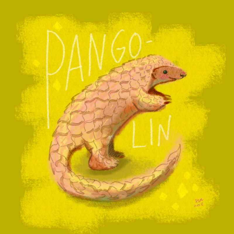 Original Pangolin artwork created by Laurel Scribner Abbott, a graphic designer with the Walt Disney Imagineers.
