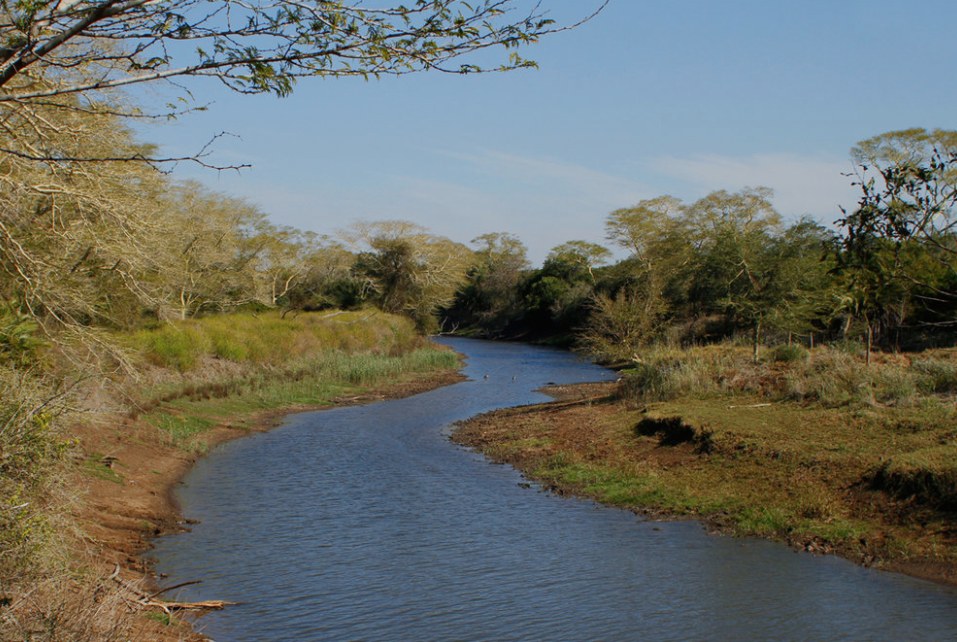 The Mzinene River on the Ukuwela Conservancy. Photo by Wild Tomorrow Fund