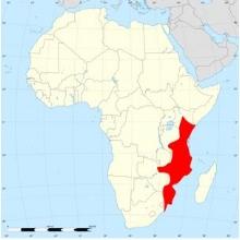 Suni (Nesotragus moschatus) distribution map. Source: wikipedia.com