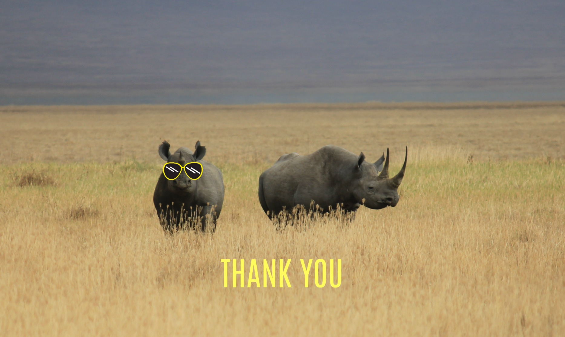 rhino thank you.jpg