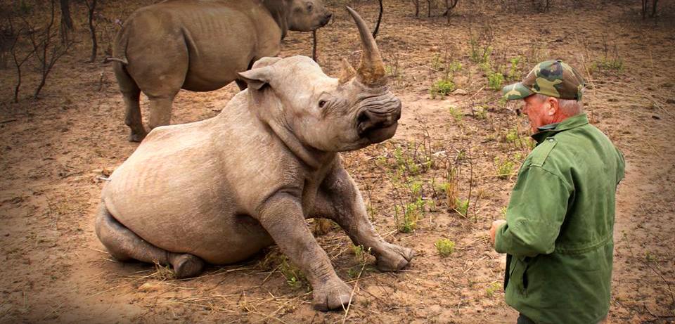 EZEMVELO KZN Wildlife vet Dave Cooper will receive the Umvikeli award in New York, US, in November for his dedication in the fight against rhino poaching.