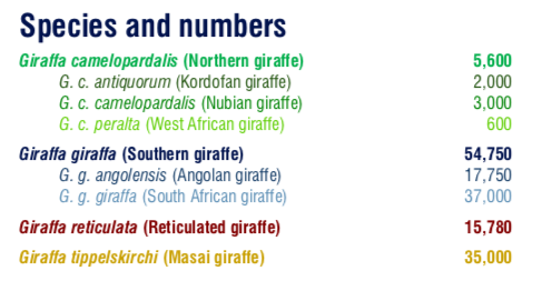 Giraffe Species and sub-species by number (Giraffe Conservation Foundation)
