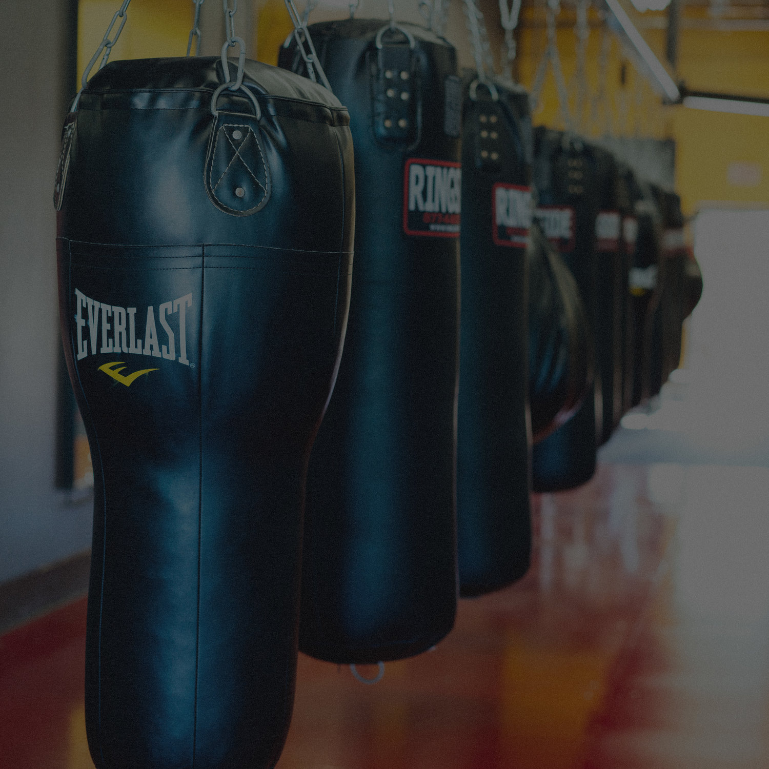 About Us — Punch Boxing Wesley Chapel