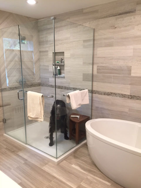 Hey! There's a dog in my shower!