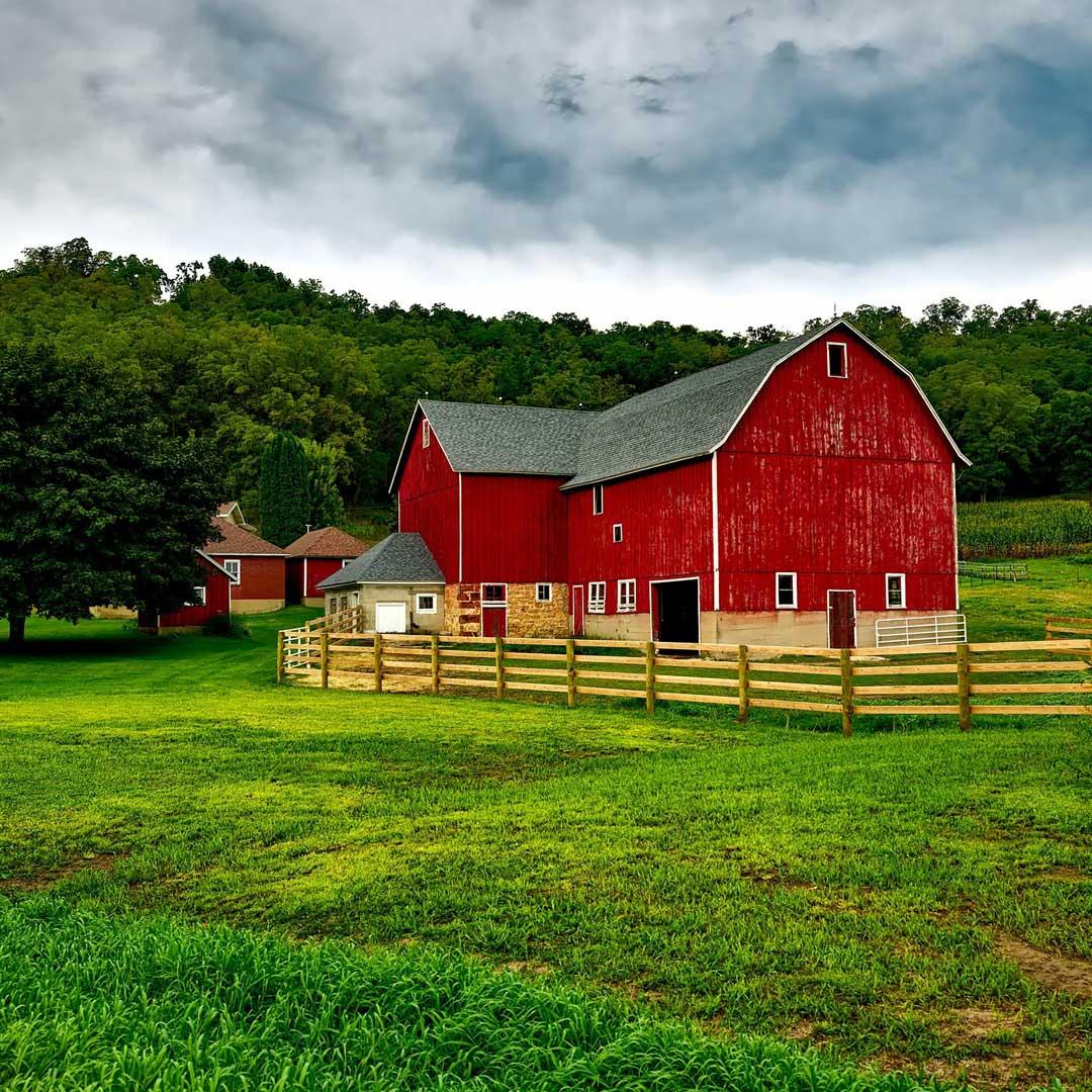 sawdust-farm`1.jpg
