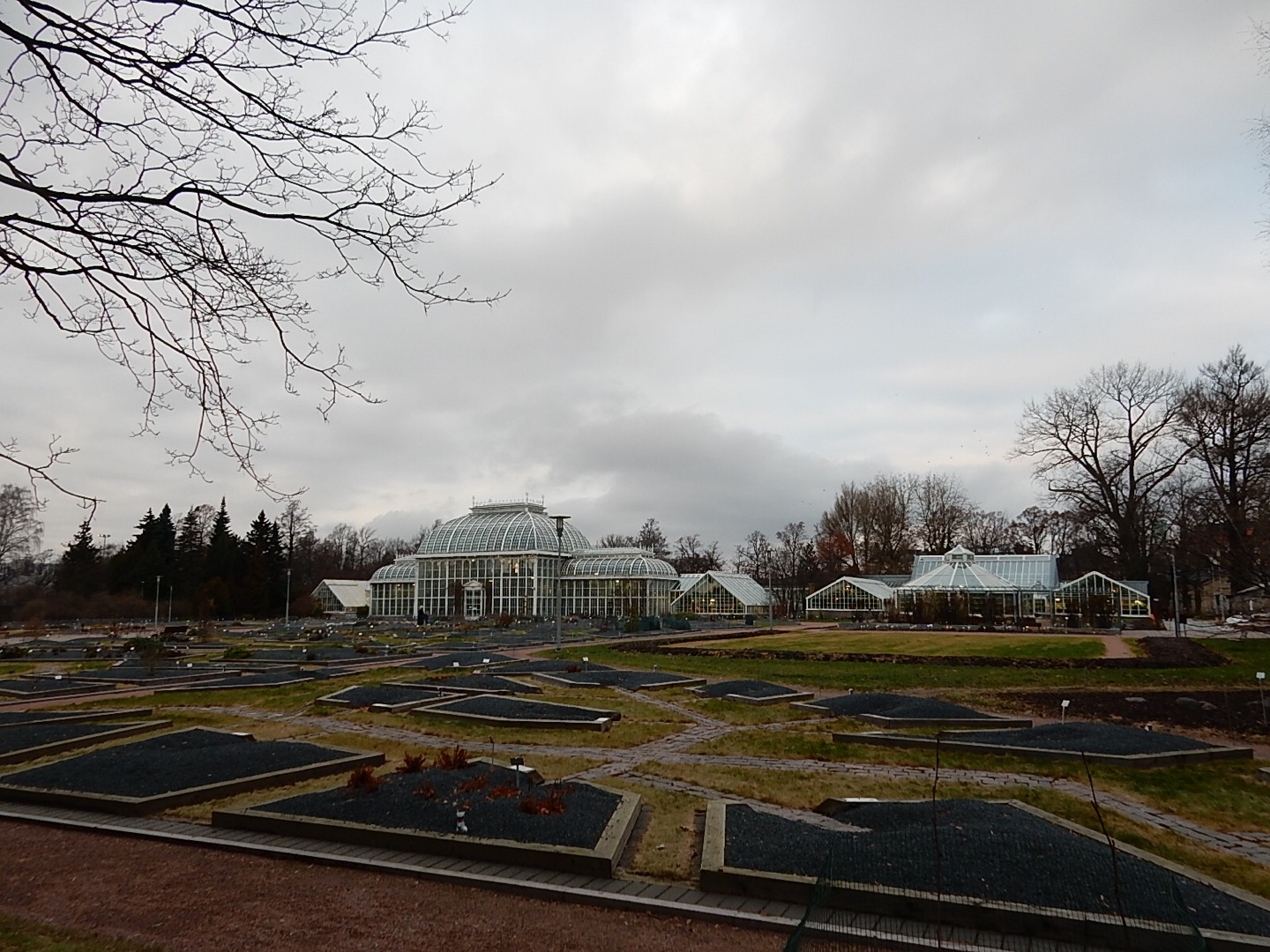 Botanical Garden as seen from Kaisaniemi Park. I stuck my camera through the fence to get an unobstructed view.