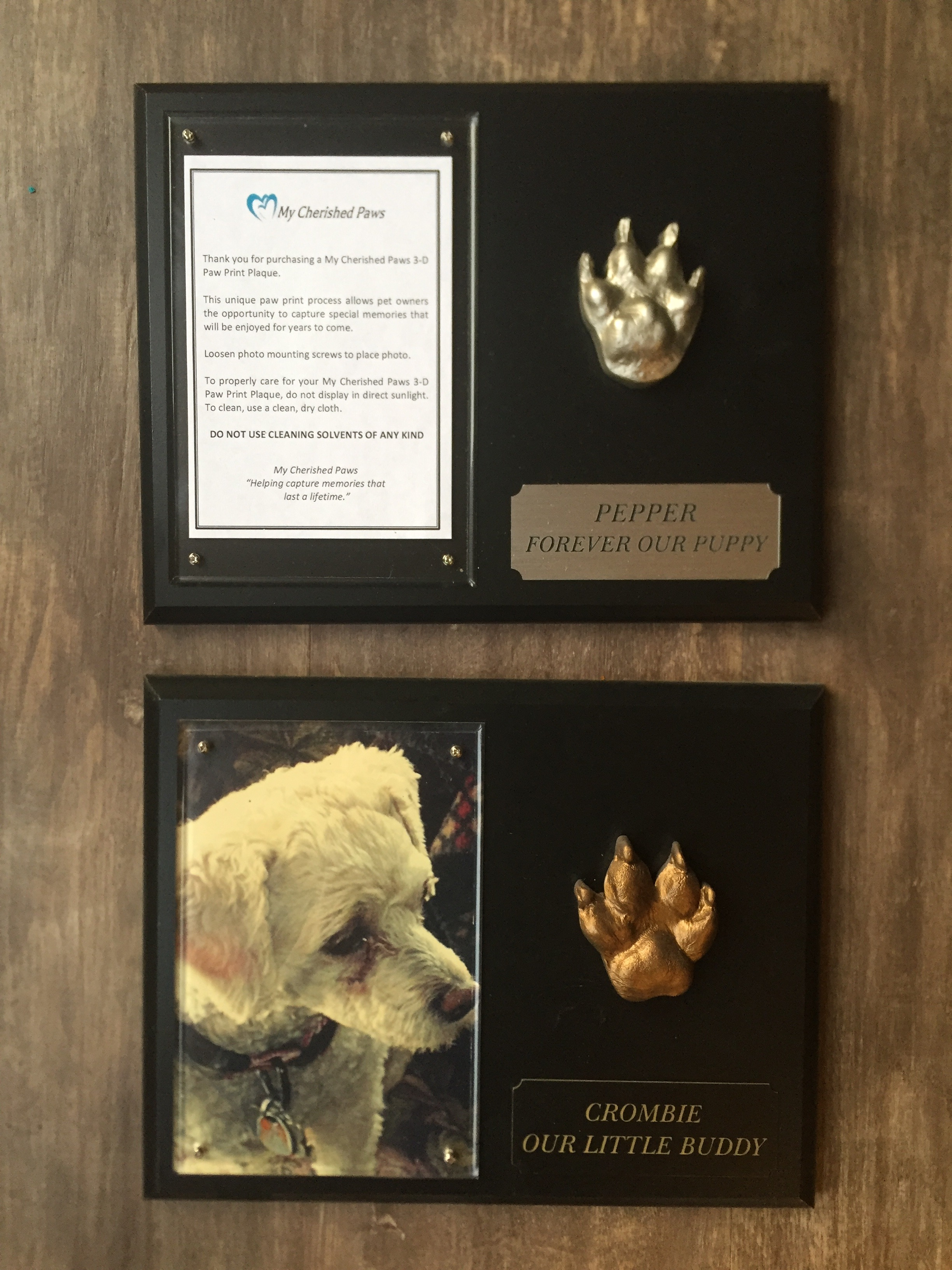 This is Pepper's plaque, with her paw print - I just picked it up and still need to get a picture of her put in it. The bottom plaque is our dog Crombie that passed away in 2012. We miss both of our doggies! I love that we have these plaques to remember them daily!