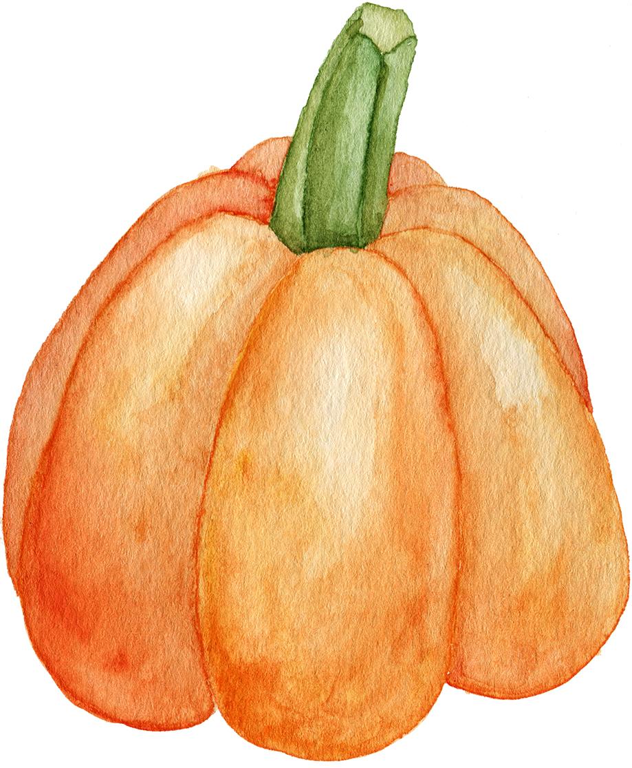 Watercolor_PumpkinOrangeSM.jpg