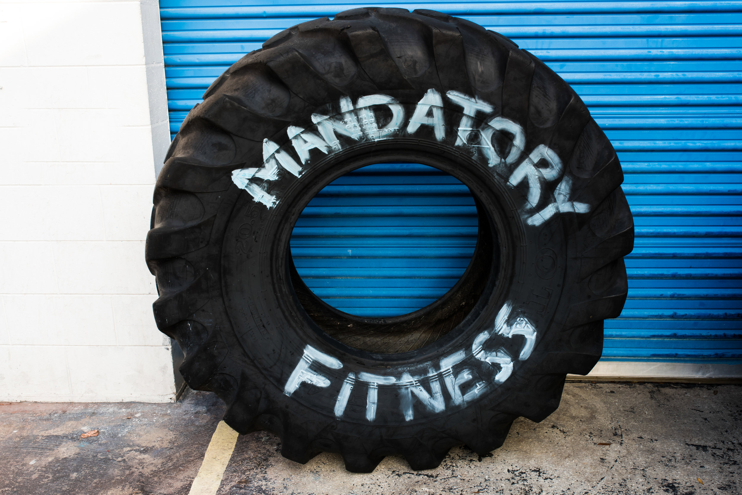 Check the Manda Fit Website! - Click Here
