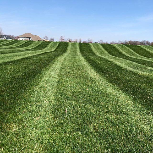 What do y'all think? #grassguru #lawnstripes #lawn #lawncare #green #stripes #business #entrpenuer #lawncarelife #lawns #exmark #nofilter @advancedturf @exmarkmanufacturing