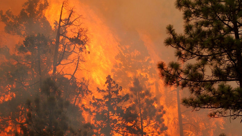 1.5-Million-Acres-Burning-Across-the-West-What-You-Need-to-Know.jpg