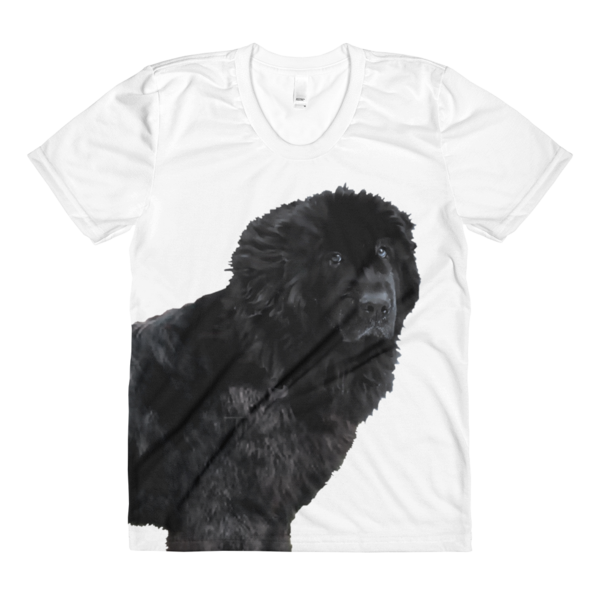 newfie t.png