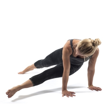 14. Rotating Plank
