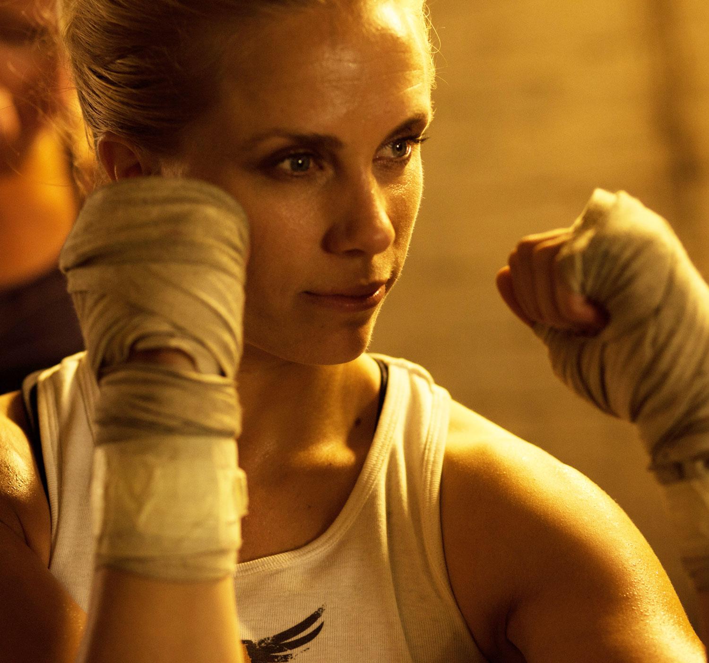 total-boxer218.jpg
