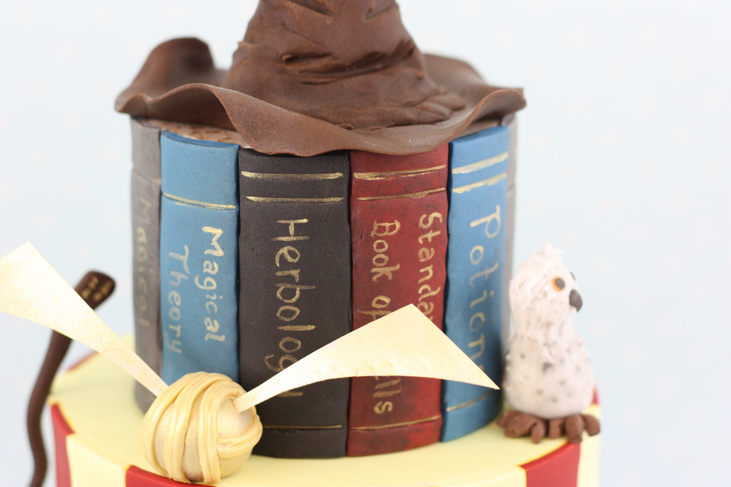 Harry Potter spell books with Hedwig and the Golden Snitch