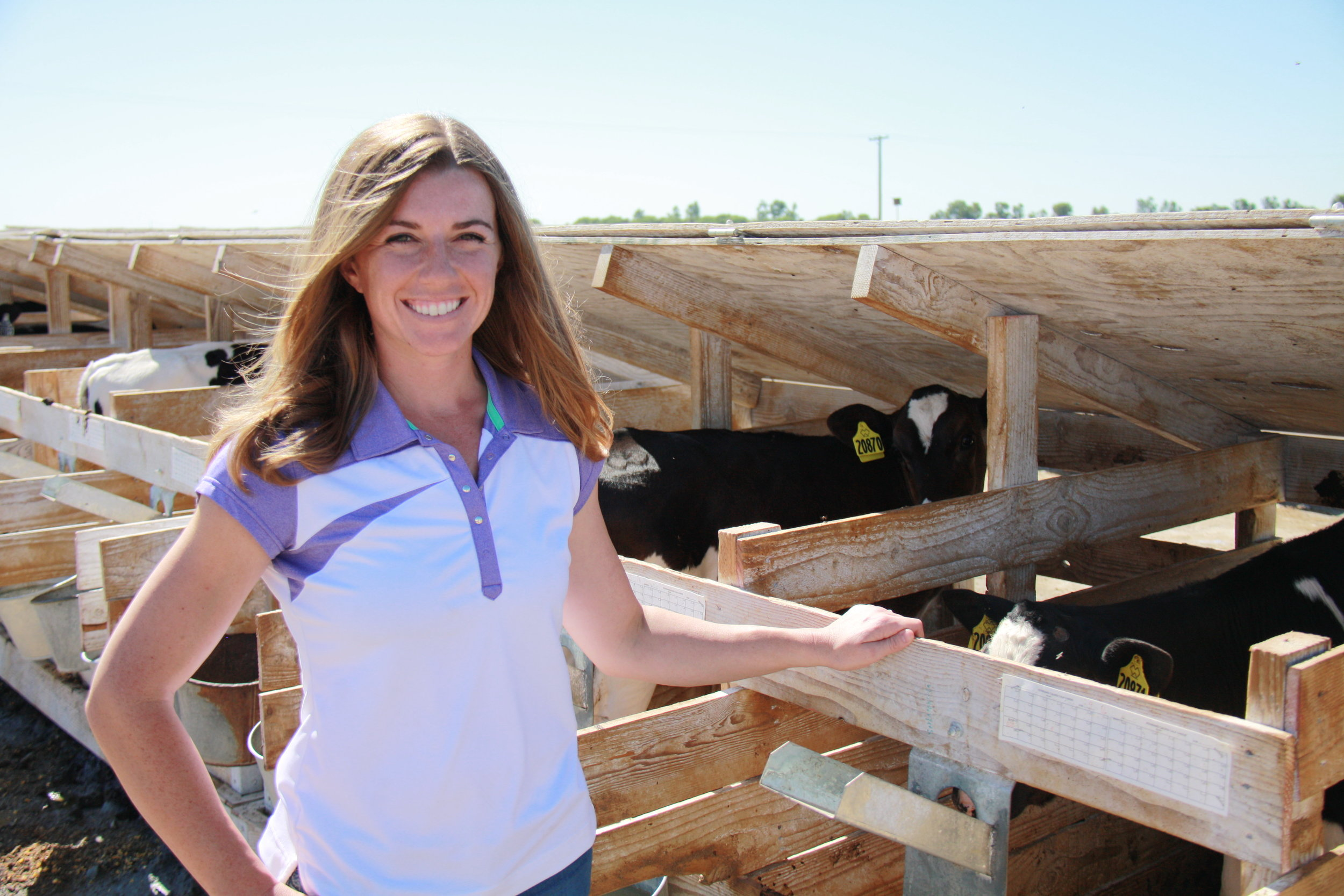 - Accredited Veterinarian in California & TexasNational Dairy FARM Program EvaluatorCertified Low Energy Animal Handling (LEAH) Instructor